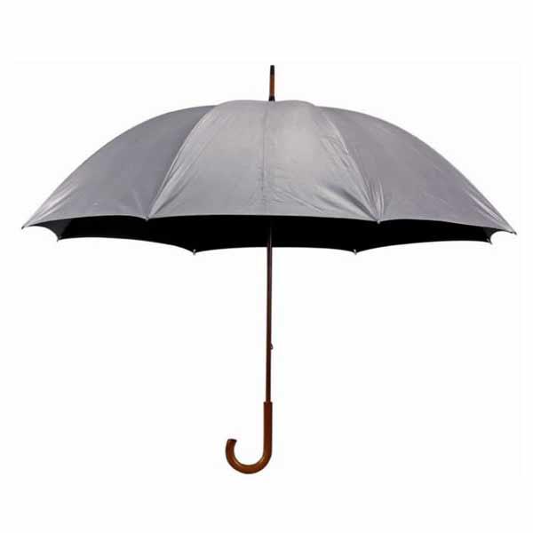 מטריה מסוג MERI